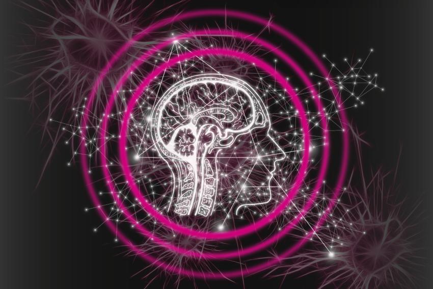 GO Digital Soloplan Workflow künstliche Intelligenz